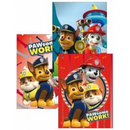 Set da 10  Quadernone PAW PATROL Disney maxi Scuola elementare