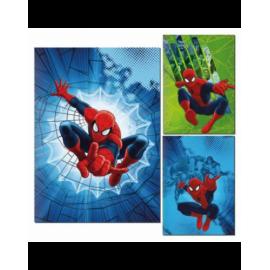 Set da 10 Quadernone SPIDERMAN  Marvel maxi Scuola elementare UOMO RAGNO